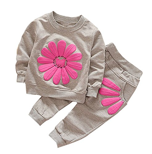 BomDeals Cute Baby Girl 2 Pcs Pants Set Long Sleeve Top and Legging Set (Age(4T), Gray)