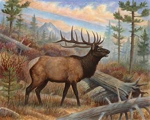 2 Moose and Elk Posters Alaska Wildlife Prints Hunting Pictures