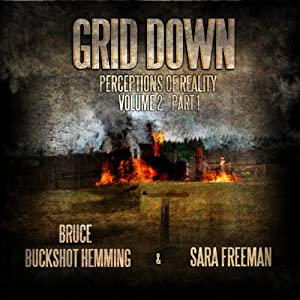 Grid Down Perceptions of Reality Audiobook