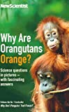 Why are Orangutans Orange?: Science puzzles in pictures - with fascinating answers