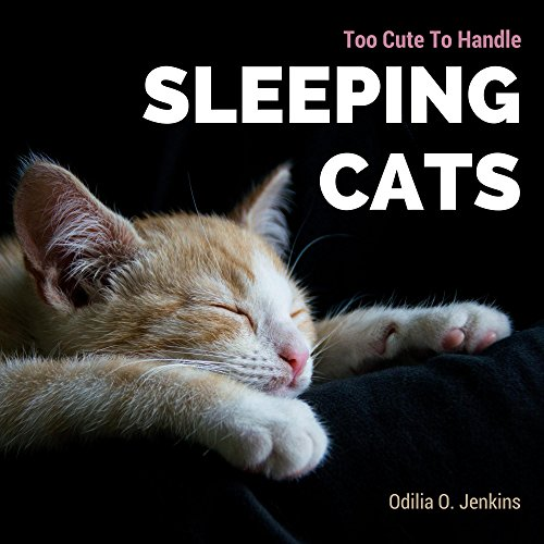 too-cute-to-handle-sleeping-cats-a-heart-warming-photo-book-for-cat-lovers-with-beautiful-quotes-ado