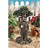 Design Toscano Treebeard Ent with Mystical Orb Halloween Statue