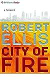 City of Fire: A Novel (Lena Gamble Series)