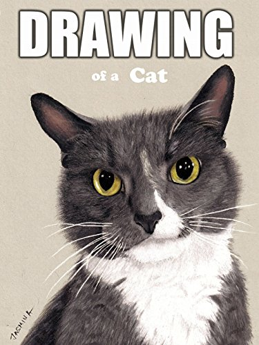 Clip: Drawing of a Cat