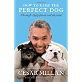 How to Raise the Perfect Dog: Through Puppyhood and Beyond ~ Cesar Millan