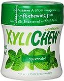 XyliChew Gum Spearmint Jar 60CT