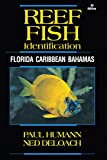 Reef Fish Identification - Florida Caribbean Bahamas 4th Edition