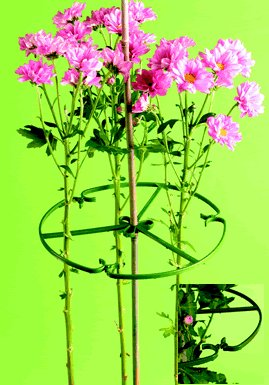 Elixir 10 Inch Plant/Flower Support Rings For Bamboo Canes - 5,10,25,50