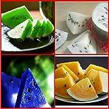スイカの種 5種類(赤、黄、青、白、緑) 種子 並行輸入品