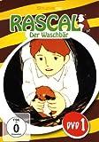 Rascal, der Waschbär - DVD 1