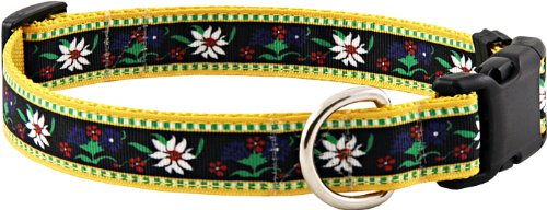 Country Brook Design Edelweiss Grosgrain Ribbon Dog Collar-M