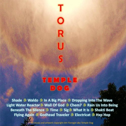 Torus by Temple Dog