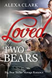 img - for ROMANCE: Loved by two Bears (Paranormal Bear Shifter Menage Romance) (Shapeshifter Mystery Alpha Werebear Romance Short Stories) book / textbook / text book