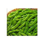 ニチレイ 台湾産摘みたて塩味枝豆 冷凍 500g  冷凍