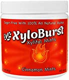 Cinnamon Xylitol Mints Jar 300 pc