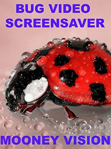 Bug Video Screensaver Set To Music