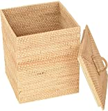 Agus Cane Wire Laundry Basket (30 cm x 30 cm x 36 cm , Beige)