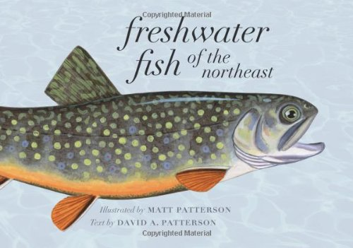 Freshwater Fish of the Northeast by Matt Patterson
