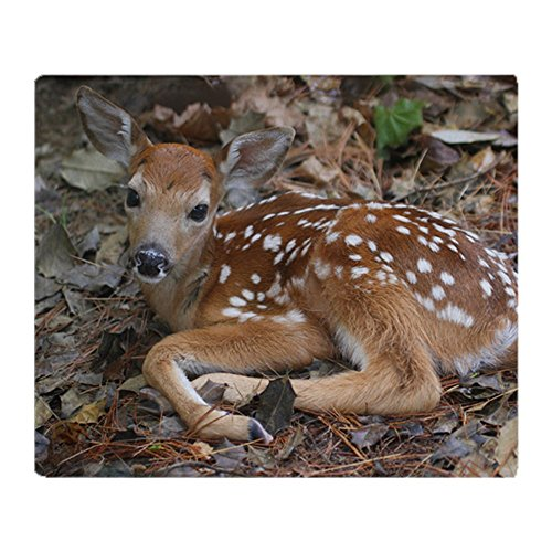 CafePress - White-Tailed Deer Fawn - Soft Fleece Throw Blanket, 50