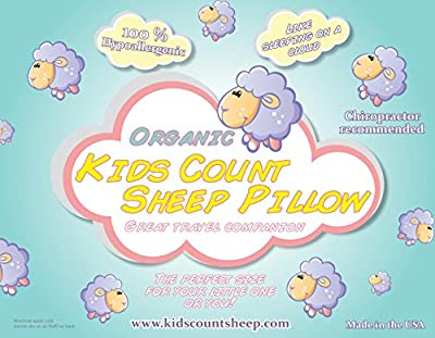 Toddler Pillow - Organic & 100% Hypoallergenic - Best Pillow For A Good Night Sleep - Chiropractor Recommended to Provide Proper Neck Support - Great Travel Pillow for the Car, Plane, Sleepovers & Nap Time - Get Your Child to Finally Sleep! Perfect Size 1