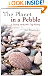 The Planet in a Pebble: A journey int...