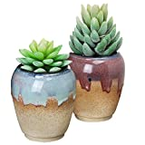 Set of 2 Tan, Red, & Blue Small Rustic Style Ceramic Plant Flower Container Planter Box Pots - MyGift®