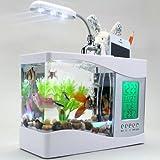 Mini USB LCD Desktop Lamp Light Fish Tank Aquarium LED Clock white + 1bag stone + a USB cable + 1 water plant,USB Desktop Aquarium Small fish tank
