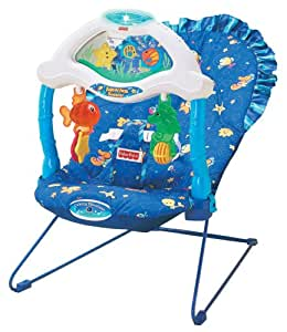 Ocean Wonders Aquarium Bouncer