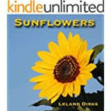 Sunflowers: Photos, Facts, and Fictions