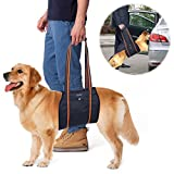 Dog Support Harness, PETBABA Mobility Rehabilitation Sling Lift Harness with Handle for K9 Canine Aid Injury and Arthritis Black XL