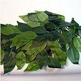 Reptile Vivarium Jungle Silk Plant Decor Ficus Large