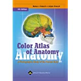 Color Atlas of Anatomy: A Photographic Study of the Human Body (Color Atlas of Anatomy (Rohen)) ~ Elke L�tjen-Drecoll