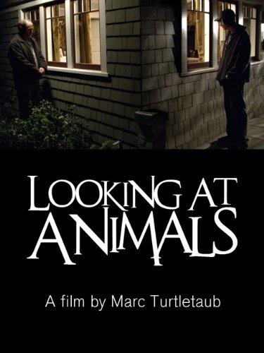 Looking At Animals