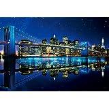 1000ピース 光るジグソーパズル ニューヨークナイトビュー (49x72cm)