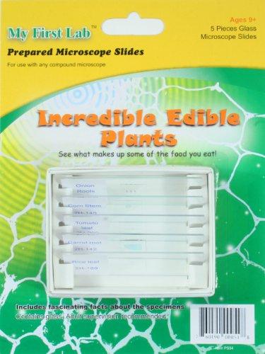 Incredible Edible Plants Prepared Slide Set - 1