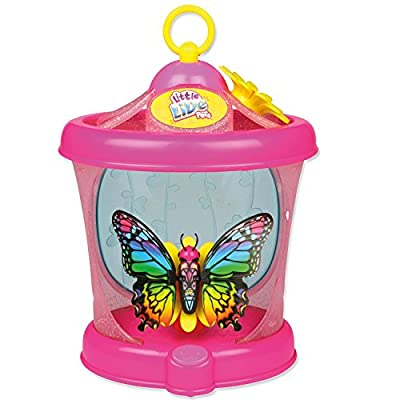 Little Live Pets Butterfly House (colours may vary)