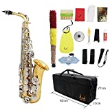 ammoon セット Eb E-フラット アルトサックス サックス ブラス製 吹奏楽 練習用 本番にも 使い勝手はあなた次第 彫刻入り 管楽器