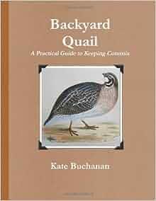 backyard quail kate buchanan 9781471644979