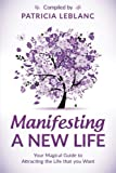 img - for Manifesting a New Life: Your Magical Guide to Attracting the LIfe that you want (Volume 2) book / textbook / text book