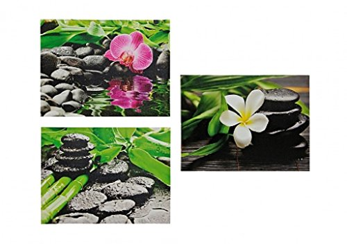 3 bilder orchidee steingarten bambus je 30cm x 40cm feng shui motiv. Black Bedroom Furniture Sets. Home Design Ideas