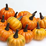 Factory Direct Craft Bag of 16 Artificial Fall Harvest Mini Pumpkins
