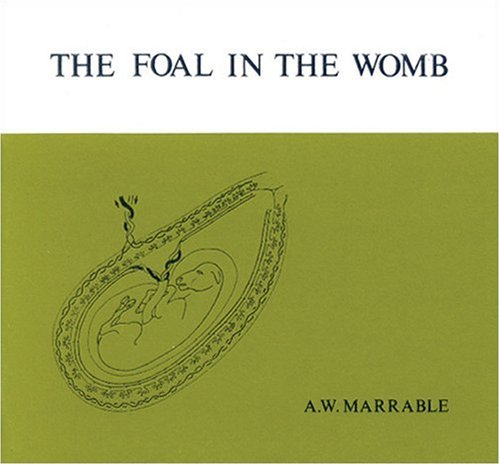 The Foal in the Womb, A.W. Marrable