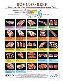 North-American-Meat-Processors-Association-Spanish-Beef-Notebook-Guides---Set-of-5---Guas-del-Cuaderno-de-Carne-de-Res-en-Espaol-para-la-Asociacin-Norteamericana-...-de-Carne---Juego-de-5-Spanish-Edition