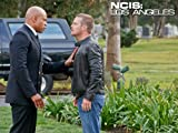 NCIS: Los Angeles: Purity