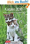 Katzen 2016: Wochenplaner, 53 Blatt m...