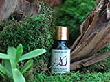 Peaceful-Life-6-Powerful-Essential-Oils-for-Rest-Relaxation-and-Stress-Relief-by-EvX-100-pure-and-organic-Many-therapeutic-uses-Bergamot-Frankincense-Lavender-Rose-Chamomile-and-Ylang-Ylang