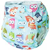 Alva Baby One Size Washable Reusable Cloth Diaper (Blue Owl) Two Inserts N15