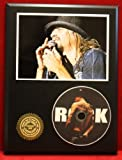 Kid Rock LTD Edition Picture Disc CD Rare Collectible Music Display
