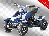 Eco Mini Kinder Quad 800W inkl. 3-Stufen Drossel ATV Bike Elektrobquad Pocketquad C500W Rot