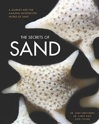 the-secrets-of-sand-a-journey-into-the-amazing-microscopic-world-of-sand
